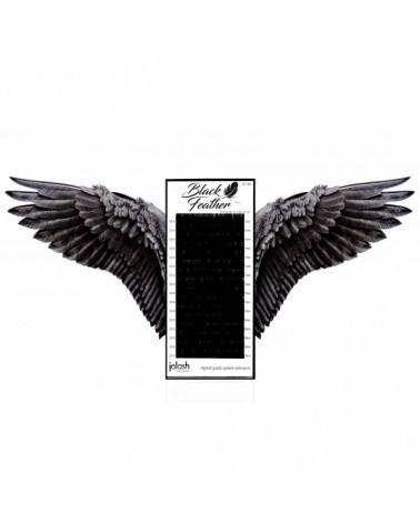 Rzęsy Black Feather D 0,1
